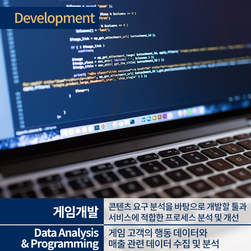 게임개발, Data Analysis & Programming